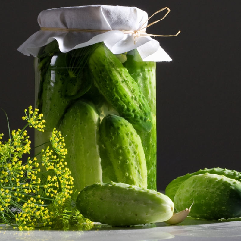 Dill Pickles Recipe